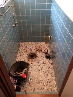 トイレ24-2 のコピー.jpeg