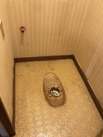 既設トイレ撤去2