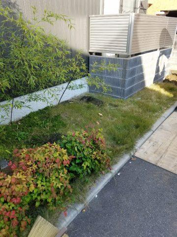 芝生からコンクリート