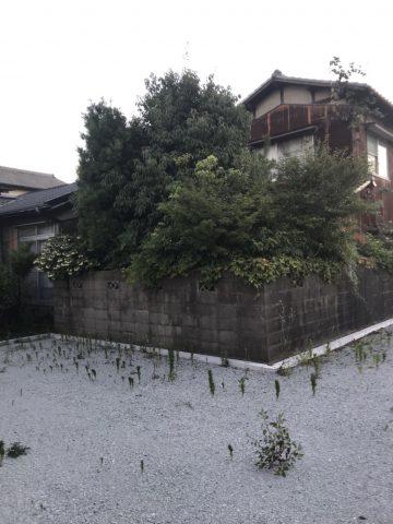 剪定 姫路市 植木 業者
