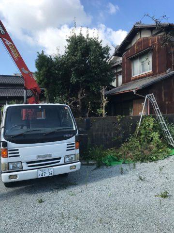 植木撤去 姫路市