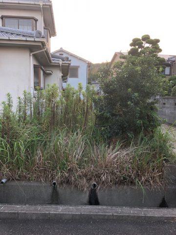 草刈り 姫路市