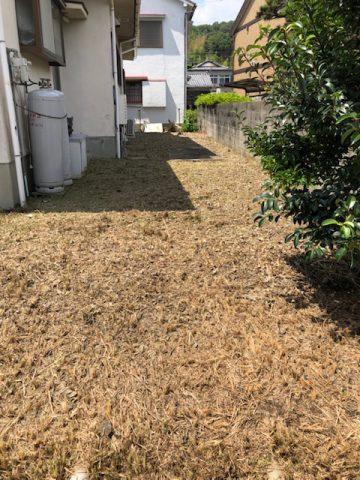 姫路市 草刈