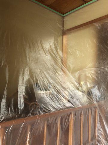 玄関框塗装