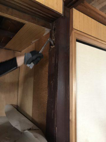2階の押入れから白蟻その調査様子