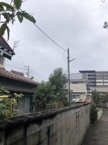 植木伐採 姫路