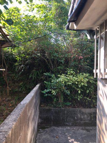 裏山伐採 姫路