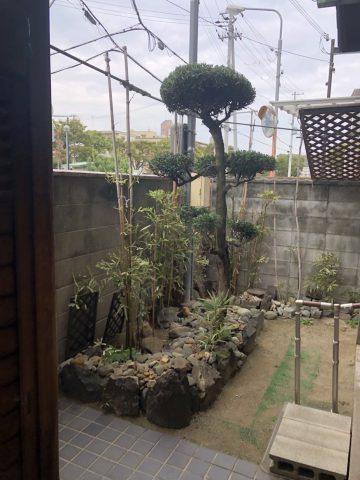 植木の剪定 姫路