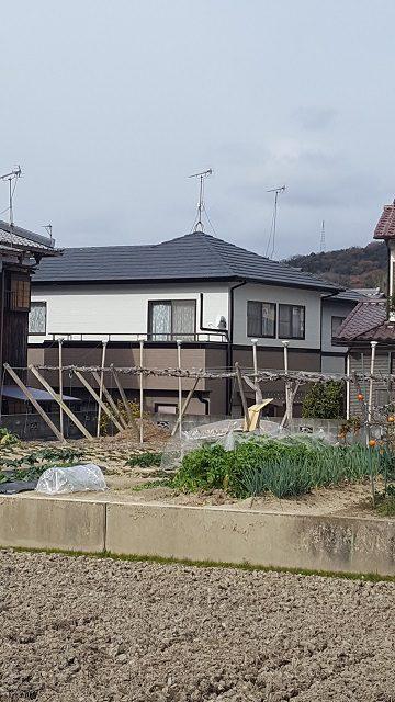 外壁塗装完工後の遠目からの家