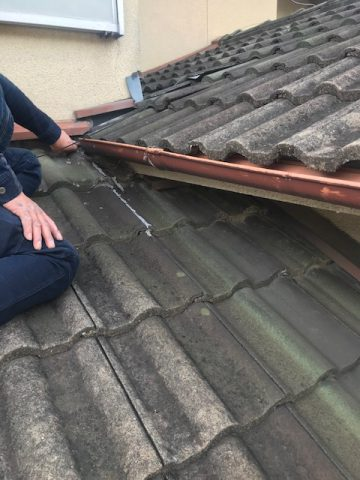 雨漏り原因を屋根に上がり調査