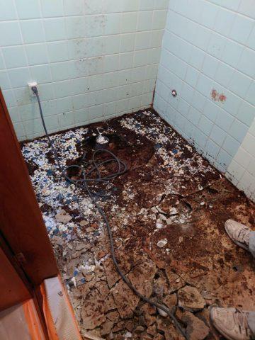 トイレ床解体