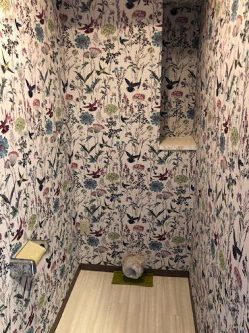 トイレ内のクロスサンゲツのリザーブ花柄へ貼替