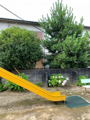 太子町 植木の伐採